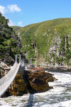 Ein Highlight auf der Garden Route ist ein Ausflug zum Tsitsikamma Nationalpark. Hier kann man über mehrere Hängebrücken direkt an der Küste entlang wandern.