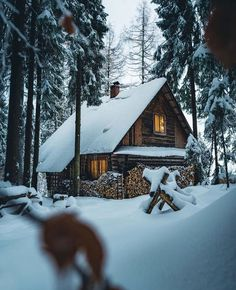 Cabin in Gorce National Park - Cozy & Comfy