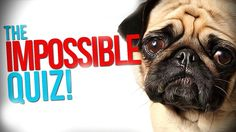 nice Watch The Impossible Quiz.
