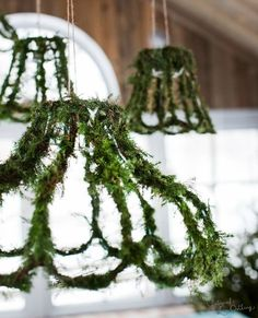 Top 8 Moss Wedding Ideas Our house has a lot of greenery, this would make a darling addition, and with all the interesting old lampshades and wire we have, definitely doable! Used Wedding Decor, Wedding Decorations, Christmas Decorations, Holiday Decor, Wedding Ideas, Budget Wedding, Moss Wedding Decor, Wedding Centerpieces, Fall Wedding