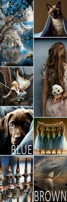 Blue, Brown, Gold, Ivory and white Mood Board and Color Palette Inspiration. Colour Pallette, Colour Schemes, Color Trends, Color Patterns, Color Combinations, Mood Colors, Colours, Color Collage, Colour Board