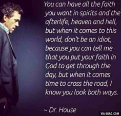 One of the best shows I have ever watched. House MD.