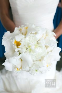 Glam White Orchid bouquet inspired by Sofia Vergara's: http://www.stylemepretty.com/2015/11/22/sofia-vergaras-orchid-wedding-bouquet/