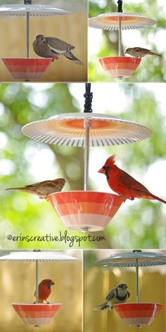 23 DIY Birdfeeders That Will Fill Your Garden With Birds. From diyncrafts.com.