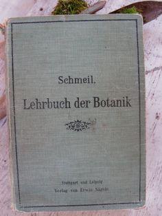 Lehrbuch der Botanik1903 38 illustrations Stuttgart by MaisonReves, $29.00