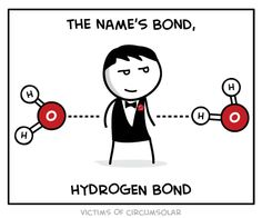 WATER james bond... hydrogen bond