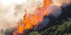 ΠΡΙΝ ΛΙΓΟ: Φωτιά σε δασική έκταση στην Ακράτα – Η άνοδος της θερμοκρασίας έφερε και τις πρώτες φλόγες