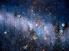 'Diamond-Dust' — Masayasu Sakuma (Japan), Open, Nature