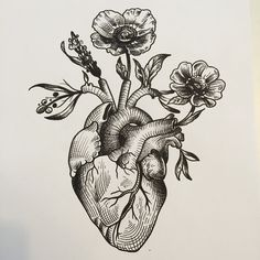 Anatomical heart drawing, anatomical heart tattoos, human heart drawing, heart with flowers tattoo 16 Tattoo, Tattoo Drawings, Body Art Tattoos, New Tattoos, Sleeve Tattoos, Tatoos, Heart Drawings, Moon Tattoos, Tattoo Music
