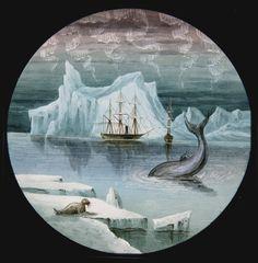 MAGIC LANTERN SLIDE ~ ARCTIC EXPLORATION. [1870S-1880S]