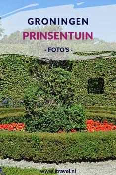 De Prinsentuin in Groningen bestaat uit een rozentuin, kruidentuin en een berceaus (een met bomen overgroeid pad). Ik heb er een aantal mooie foto's gemaakt in de winter en zomer. Kijk je mee in de Prinsentuin in Groningen? #prinsentuin #groningen #fotos #jtravel #jtravelblog