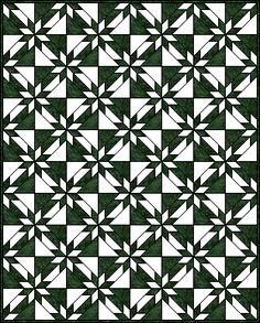 Hunter's Star Quilt - I like how the outlining creates an illusion of waves. This would be nice with blue batiks. DITTO!