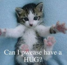 Hug ME Please....http://freedivingguide.com/
