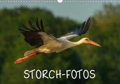 Storch-Fotos - CALVENDO Kalender von Janto Trappe - http://www.calvendo.de/galerie/storch-fotos/ - #storch #kalender