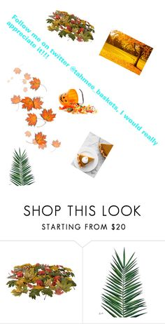"""Follow me plz 😍😍"" by leighanne679 ❤ liked on Polyvore featuring Nika"