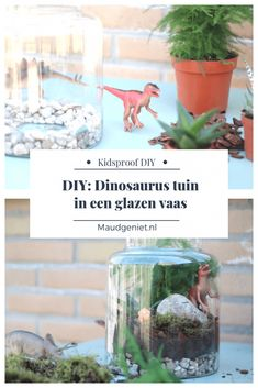 DIY: Maak je eigen mini dinosaurus tuin in een pot   Plant in a jar - Maudgeniet.nl Dinosaurs, Diys, Workshop, Crafts, Atelier, Manualidades, Bricolage, Work Shop Garage, Do It Yourself