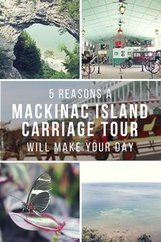 """5 Reasons A Mackinac Island Carriage Tour Will Make Your Day"" - Why book a carriage tour on your next Mackinac Island adventure? Read on to discover what Mackinac Island Carriage Tours are all about and why taking one might become the best part of your trip! (via Wading in Big Shoes)"