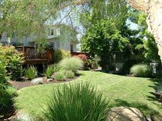 Image from http://backyard.cvhslaw.com/wp-content/uploads/2015/06/nice-backyards-with-weeds.jpg.
