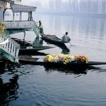 Flower Seller on Dall Lake, India - Mike Lane