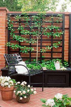 a backyard patio, a planter box with a trellis is an accessible setup for training an espaliered tree. Simply tie the plant's branches directly to the wood slats as they grow and spread, using jute twine or some other soft, flexible type of plant tie. Back Gardens, Small Gardens, Outdoor Gardens, Small Space Gardening, Backyard Patio, Backyard Landscaping, Landscaping Ideas, Patio Ideas, Porch Garden