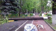 Ураган в Москве « FotoRelax