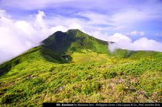 KANLAON 25 emerging Philippine tourism hot spots named - Yahoo! News Philippines Philippines Destinations, Philippines Tourism, Visit Philippines, Puerto Princesa, Visayas, River Trail, Cool Places To Visit, Things To Come, Island
