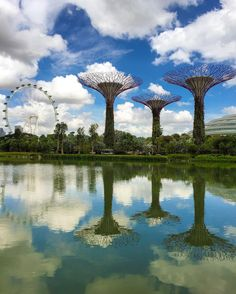 Hope you're having a great Friday  ะ  Location: Gardens by the Bay Singapore by ivanaljubas