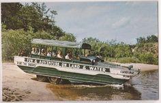 "Wisconsin Dells Postcard ""Duck Boat Entering Wisconsin River"" c1950s Unused"