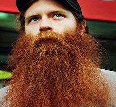 Red Beard, Ginger Beard, Hairy Men, Bearded Men, Epic Beard, Long Beards, Auburn, Beard Care, Rodin