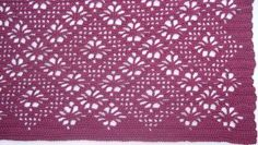 Spider Lace Crochet Throw http://www.allfreecrochet.com/Crochet-Afghan-Patterns/Spider-Lace-Crochet-Throw