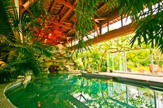 This home brought the landscape inside! The entire home was designed as a tropical paradise resort.
