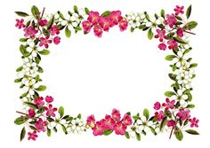free flower frame png & flower frame journaling card – Blumenrahmen – freebies   MeinLilaPark – digital freebies
