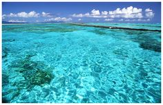 the crystal-clear waters of Bora Bora