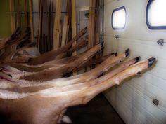 Home Deer Butchering 101