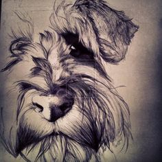 Miniature Schnauzer by ~WarriorDork on deviantART     LOVE IT!!