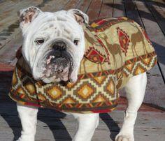 ORDER English Bulldog Reversible Coat Polar by MeatyWildman