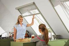 Homeplaza - Ein Insektenschutz-Rollo am Dachfenster hält die Plagegeister draußen - (K)Ein Sommer ohne Mücken