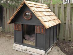 Haus für den Hund bauen