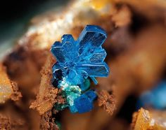 Langite, very unusual and rare mineral (secondary copper mineral formed from the oxidation of copper sulphides) Color: Blue Greenish blue ; Hardness: 21/2 - 3 ;  Monoclinic B-