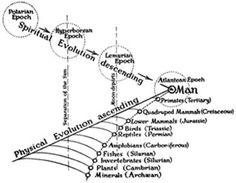 Evolution What was the original sin?
