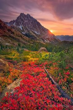Mount Stuart Sunburst, Washington