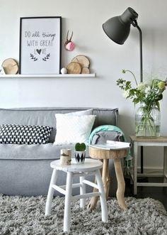 un tais en gris clair shaggy et un canapé gris dans le salon
