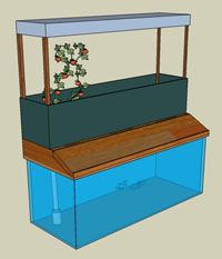Inexpensive indoor aquaponics setup that will be good in any season or climate   http://fishaquaponic.com