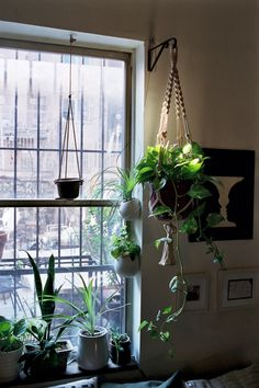there is a place for macrame and plants by a window
