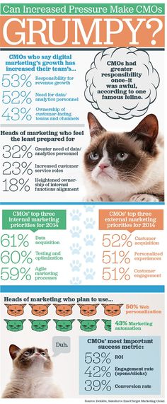 Infographic: Can Increased Pressure Make CMOs Grumpy? - Direct Marketing News
