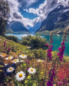 aroused Photo by ~ Beautiful summer day in Lovatnet, Norway. Pretty Pictures, Cool Photos, Amazing Photos, Beautiful World, Beautiful Places, Beautiful Scenery, Wonderful Places, Beautiful Nature Scenes, Natural Scenery