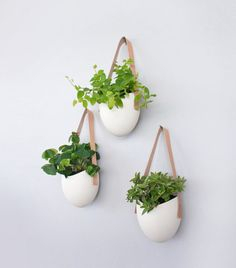 Set of 3 porcelain + leather hanging planters. 10 Hanging Planters For Extraordinary Indoor Decoration. Ceramic Wall Planters, Hanging Planters, Planter Pots, Hanging Baskets, Wall Mounted Planters Indoor, Wall Hanging Plants Indoor, Wall Mounted Plant Holder, White Planters, Modern Planters