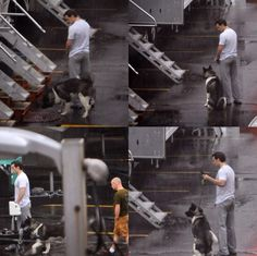Henry Cavill and his dog on the set of 'BATMAN V SUPERMAN'