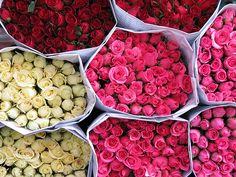 Comprar flores para casa  cada pocos días