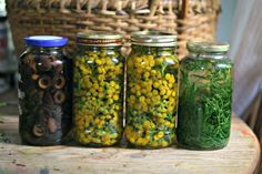 The Sitting Tree: Natural Dyeing: Tansy Cucumber, Mason Jars, Natural Dyeing, Nature, Homeschool, Pattern, Fiber, Tie Dye, Color